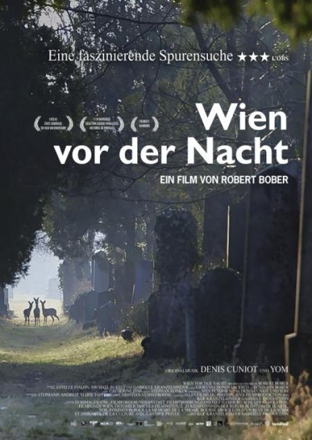 Vienna before nightfall - Filmplakat